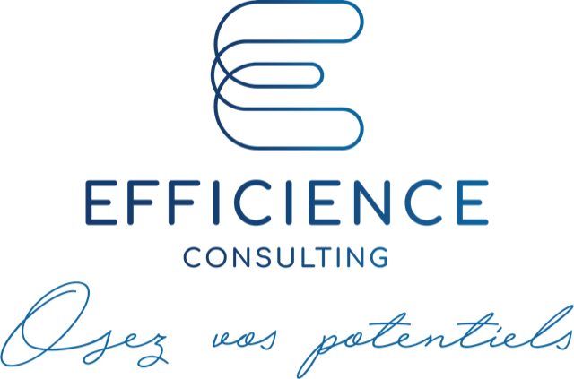LOGO Efficience Consulting Osez vos potentiels vertical